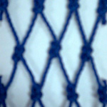 Blue Gundry Scallop Polythene Netting